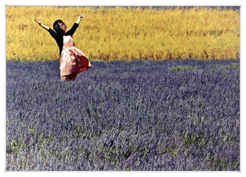 Danse au milieu des lavandes