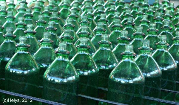 Détails et transparence dans le vert