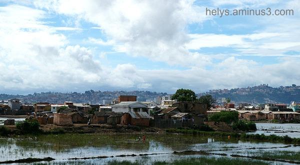 Antananarivo: Betsimitatatra swamps1