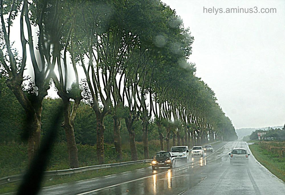 in the rain1