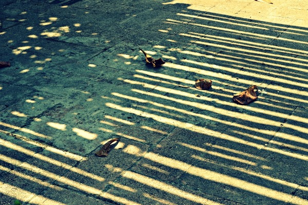 Dry shadows