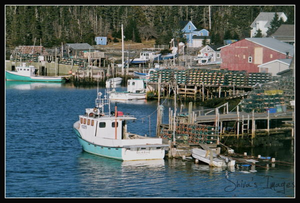 South Shore - Wharf - Lobster traps