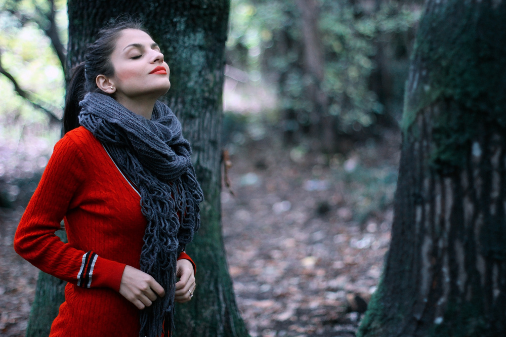 """""""Red in the woods"""""""