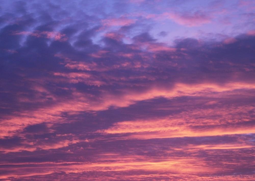 Un matin, depuis ma fenêtre