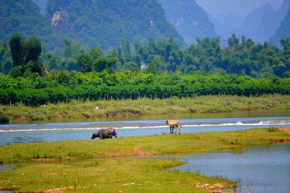 Sur la rivière Li (2)