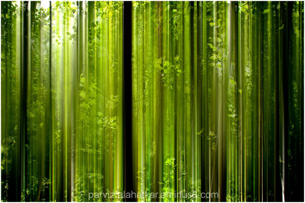 green anthem