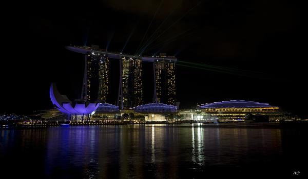 The Marina Bay Sands (Singapore)