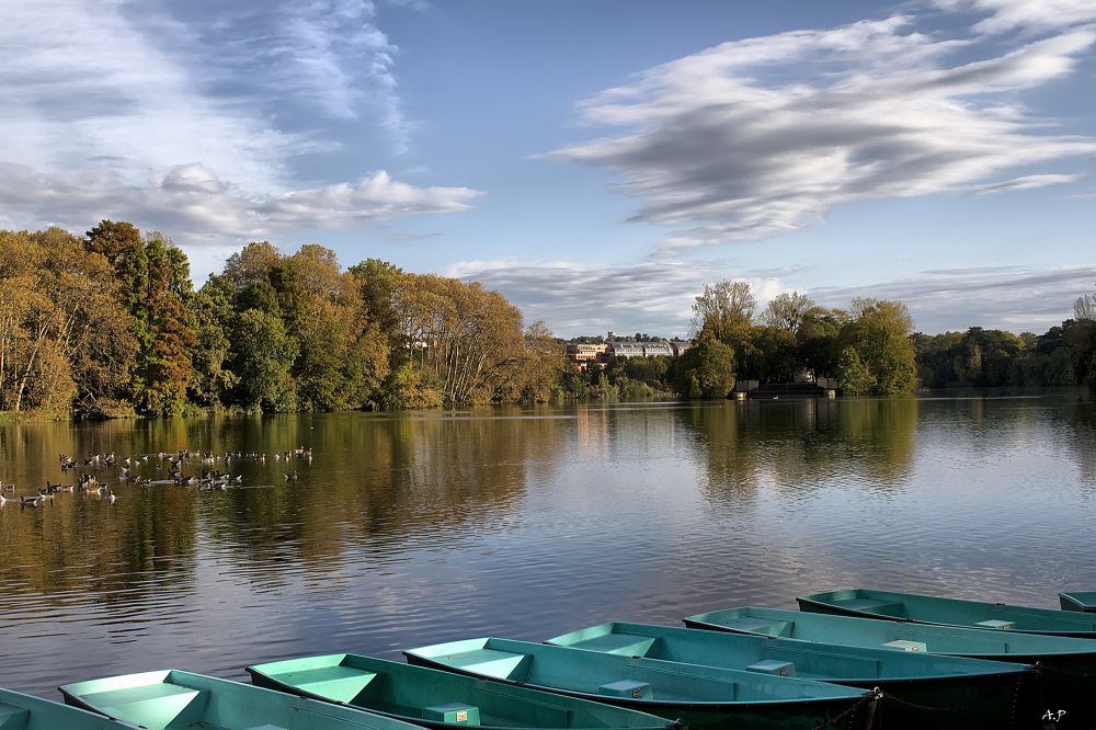 Les couleurs de l'automne (Lyon)