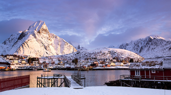 Reine in the morning