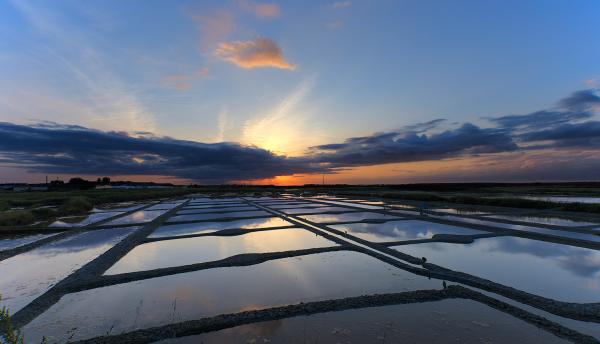 Coucher de soleil sur les marais salants