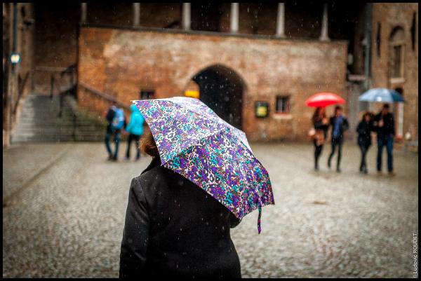 Vlaamse regen