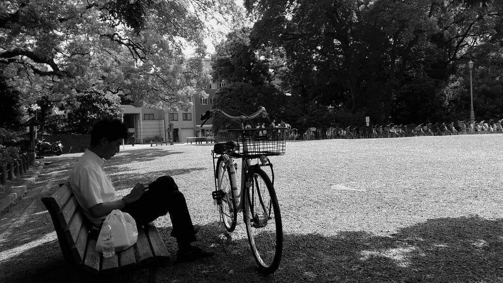 bikes bikes bikes !!!