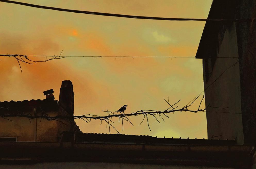 oiseau du soir,  bonsoir
