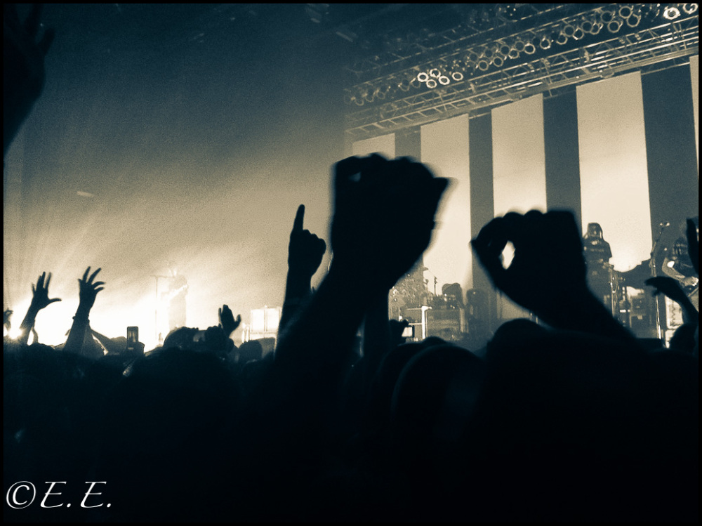 Hands Up, Rock Loud