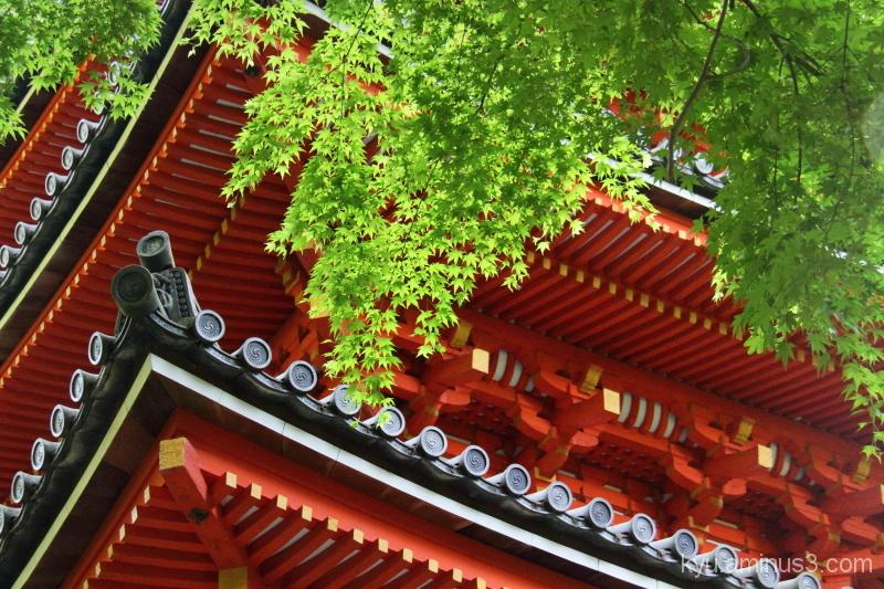 Pagoda in the fresh green