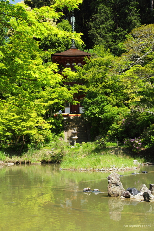 Pagoda in the green