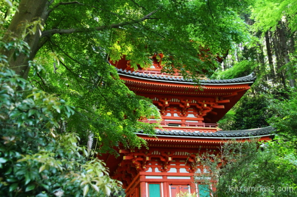 Pagoda in the mountain