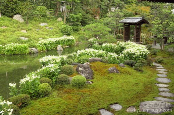 Garden in Ryosokuin Temple