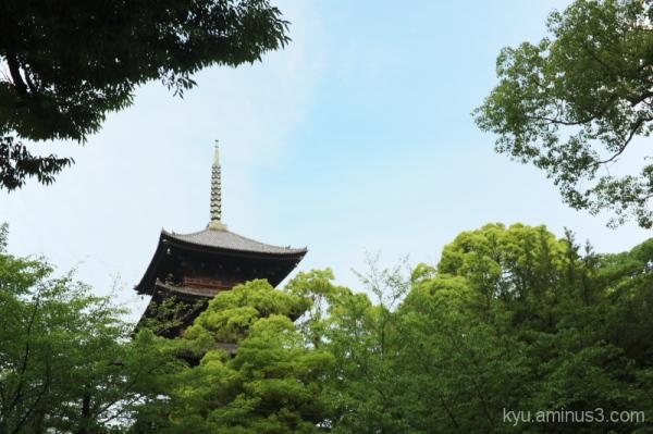 The big pagoda in Toji