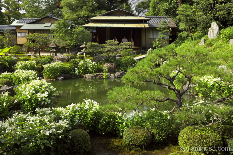 Teahouse in the garden