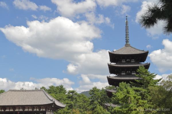 Pagoda in Koufukuji Temple