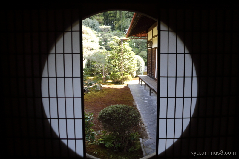 Garden view through the window