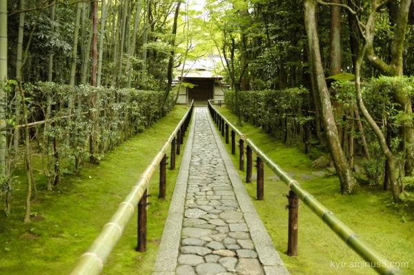 green Kotoin temple Kyoto