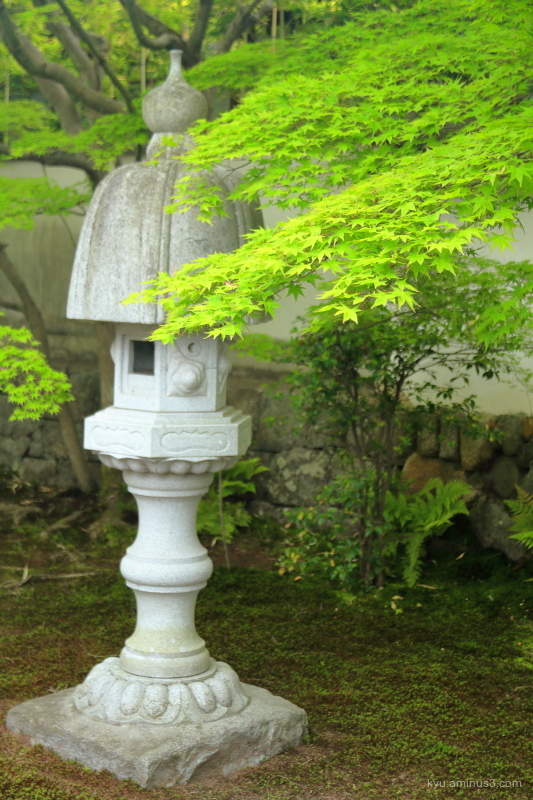 stone-lantern green maple garden rikkyokuan temple
