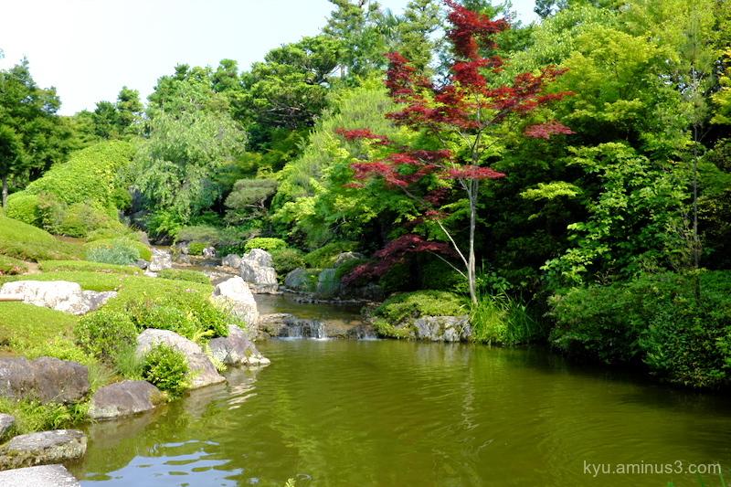garden Taizoin temple Kyoto