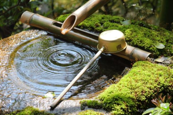ripples garden Daihouin temple Kyoto