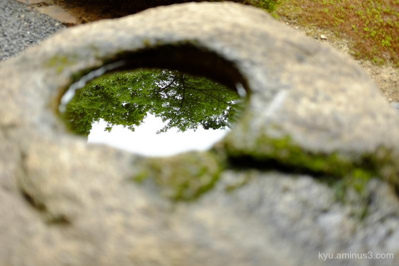 Reflections Komyoin temple Kyoto