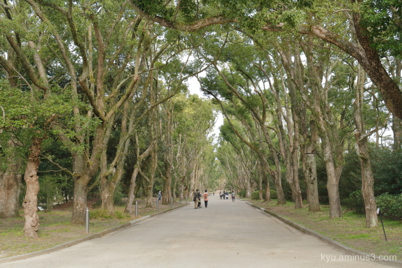 botanical-garden Kyoto