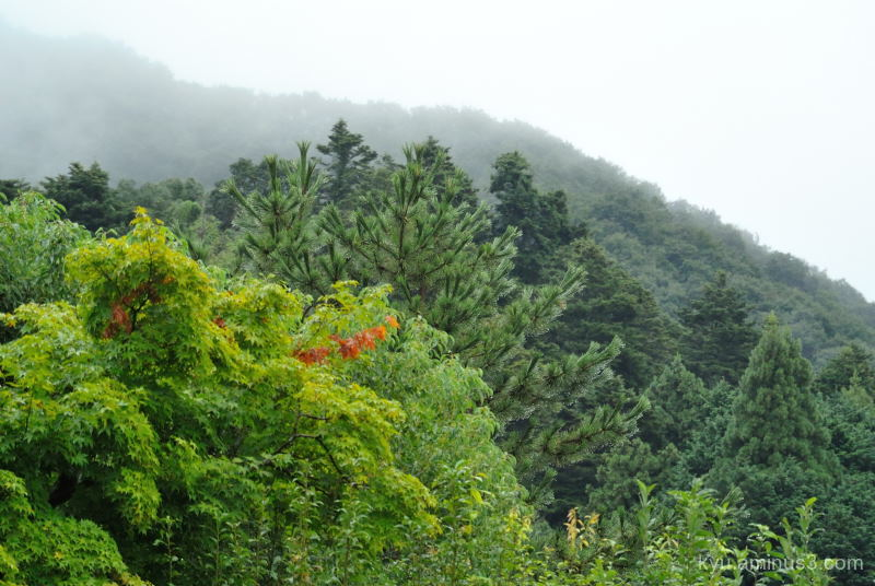 mountains mist Raikyuji temple Takahasi Okayama