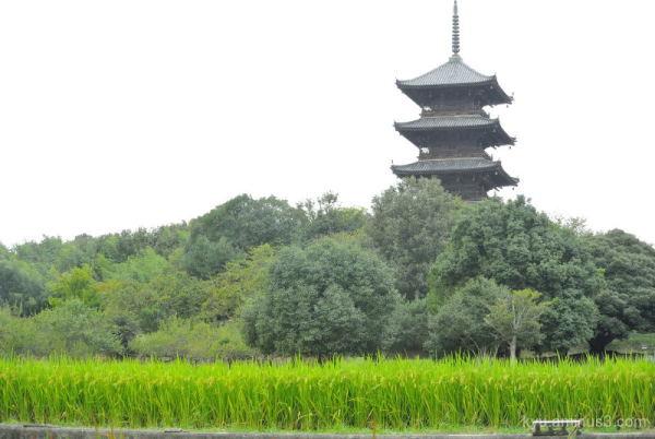 Pagoda Bitchukokubunnji Temple Kibi Okayama