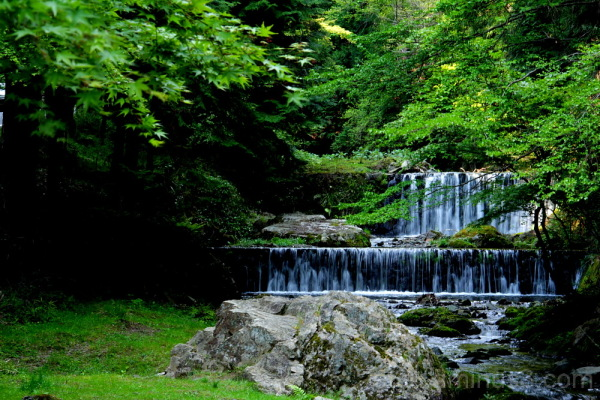 fresh green & waterfall in kurama 新緑と滝 鞍馬