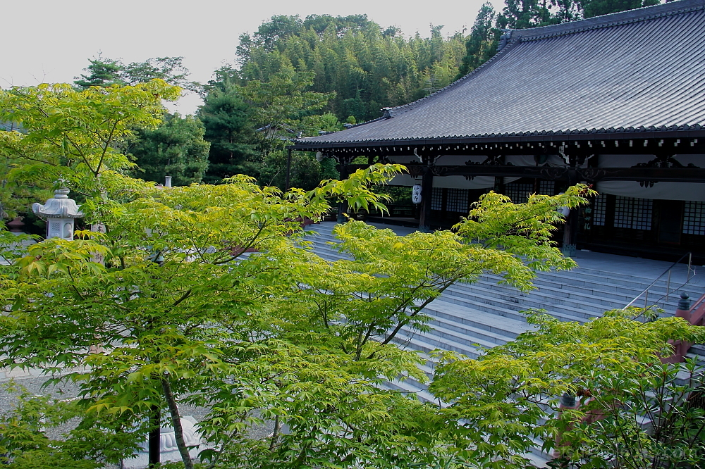 The main hall in Myomanji temple 妙満寺