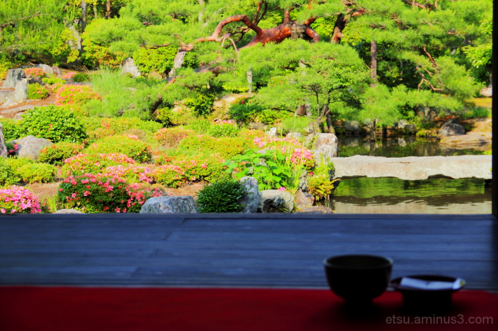 Tea time (at a garden) 等持院