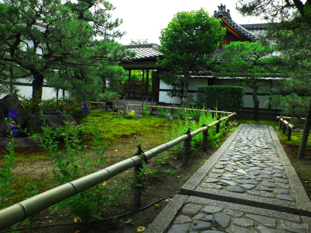After walking on the pavement...... 建仁寺