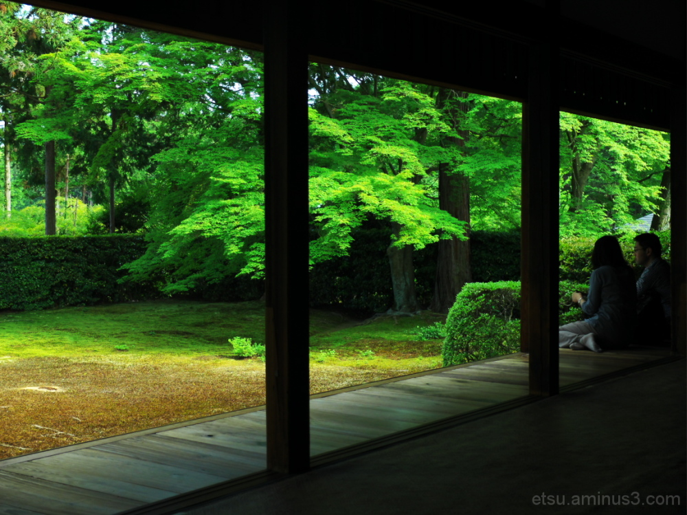 Seeing a garden together....... 圓通寺