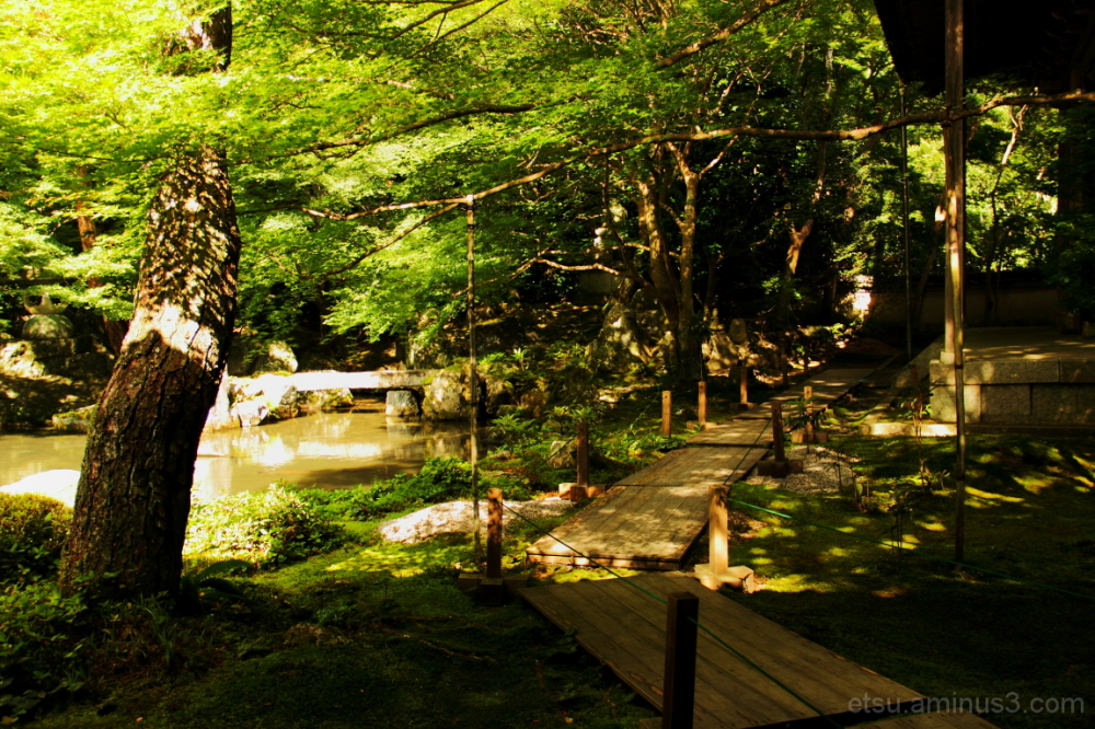 The path in the shade (at a garden) 蓮華寺