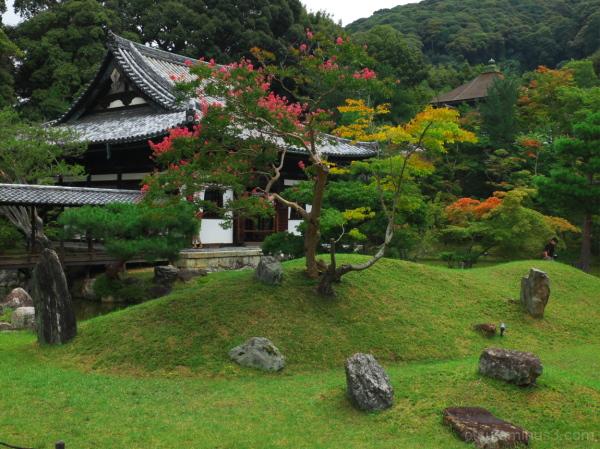 My favorite garden 高台寺