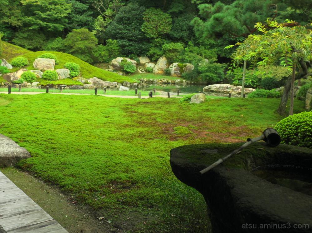 A scoop at a garden..... 青蓮院
