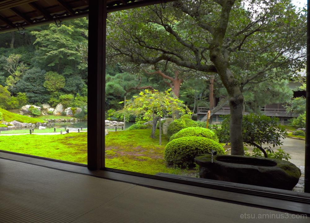 Beautiful garden...... 青蓮院