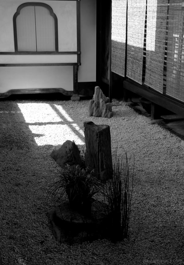 The small garden.........