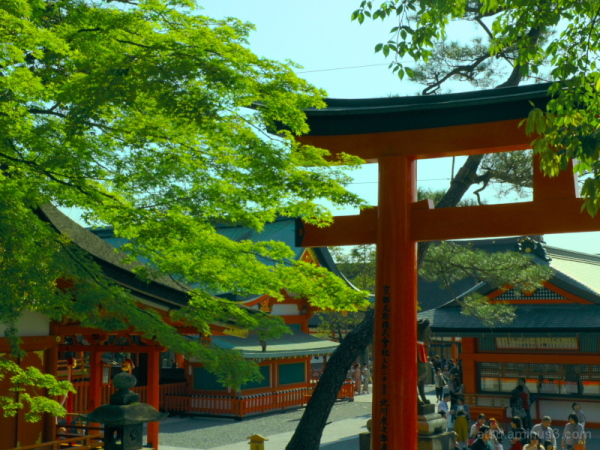 At a famous shrine........