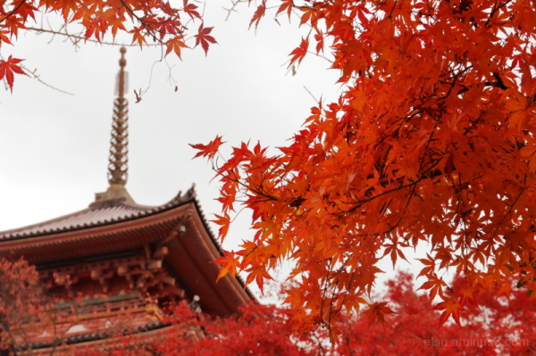The pagoda at a temple.................