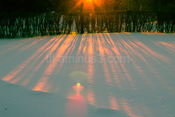Sunset in Brandon Manitoba