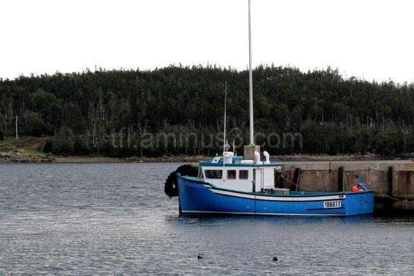 Fishing boat in Louisbourg
