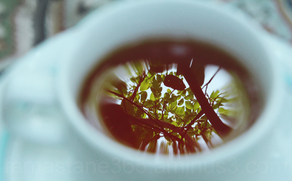 tea reflection