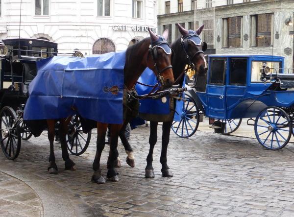 NOEL A VIENNE -  CHRISTMAS IN VIENNA